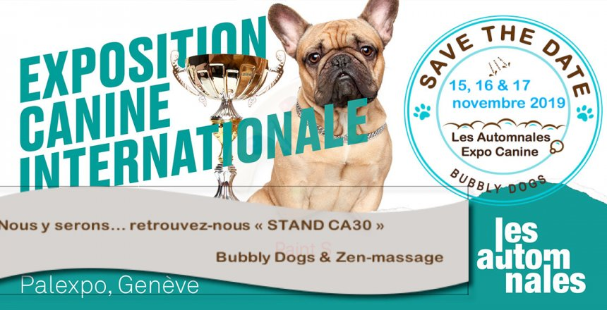 Final_exposition-canine-internationale_les-automnales_palexpo-geneve_header_page